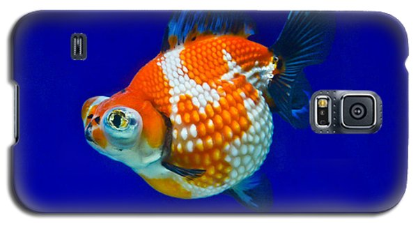 Pearl Scale Goldfish Galaxy S5 Case