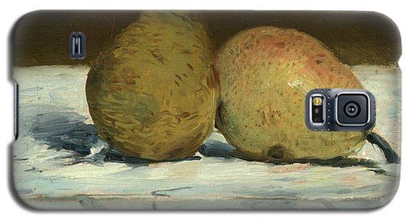 Pears Galaxy S5 Case
