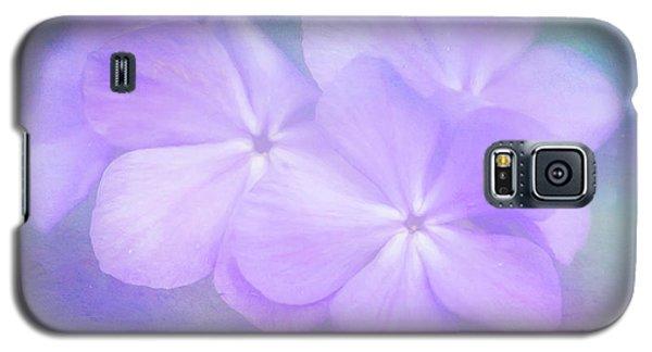 Phlox In The Evening Light Galaxy S5 Case
