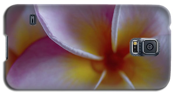 Plumeria Galaxy S5 Case by Roger Mullenhour