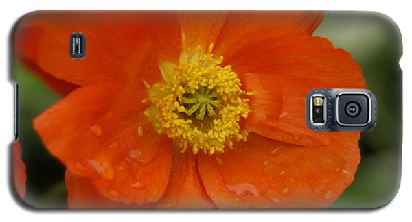 Galaxy S5 Case featuring the photograph Poppy by Heidi Poulin