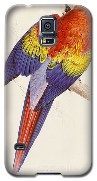 Red And Yellow Macaw Galaxy S5 Case by Edward Lear