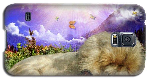 Rest  Galaxy S5 Case by Dolores Develde