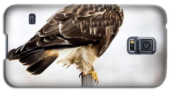 Galaxy S5 Case featuring the photograph Rough-legged Hawk by Ricky L Jones
