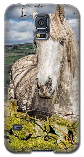 Rustic Horse Galaxy S5 Case