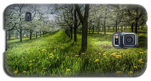 Spring Colors Galaxy S5 Case by Bruno Santoro