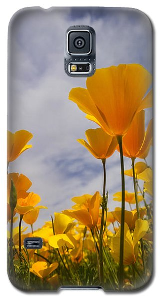 Springtime Poppies  Galaxy S5 Case