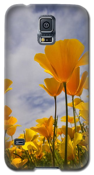 Springtime Poppies  Galaxy S5 Case