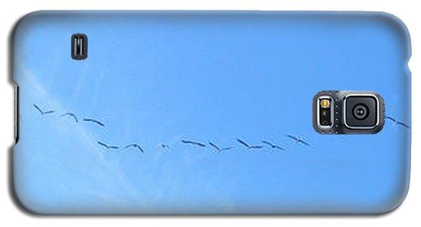 String Of Birds In Blue Galaxy S5 Case