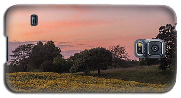 Sunflowers In Pink Galaxy S5 Case