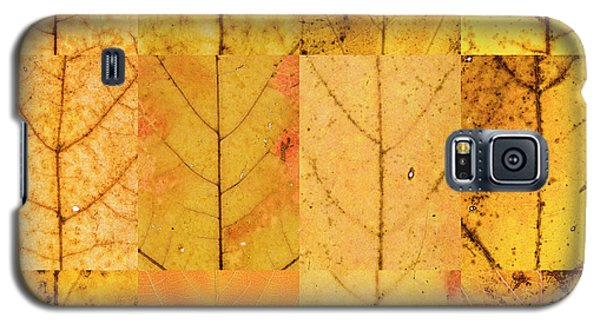 Swatches - Autumn Leaves Inspired By Gerhard Richter Galaxy S5 Case