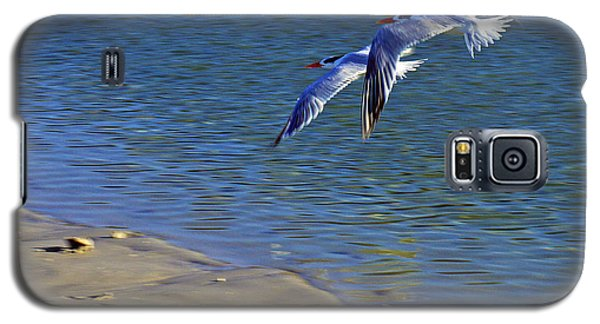 2 Terns In Flight Galaxy S5 Case