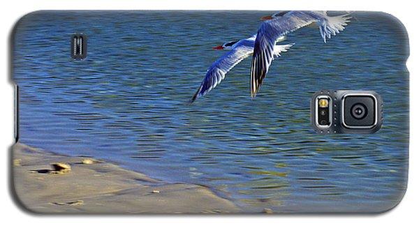2 Terns In Flight Galaxy S5 Case