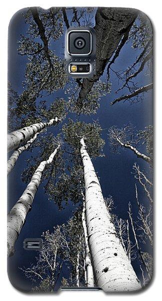 Towering Aspens Galaxy S5 Case