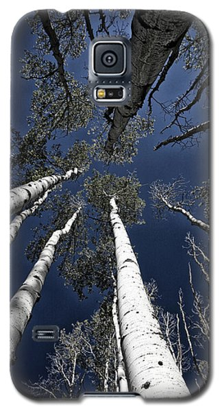 Towering Aspens Galaxy S5 Case