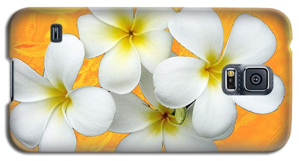 Tropical Frangrapani II Galaxy S5 Case