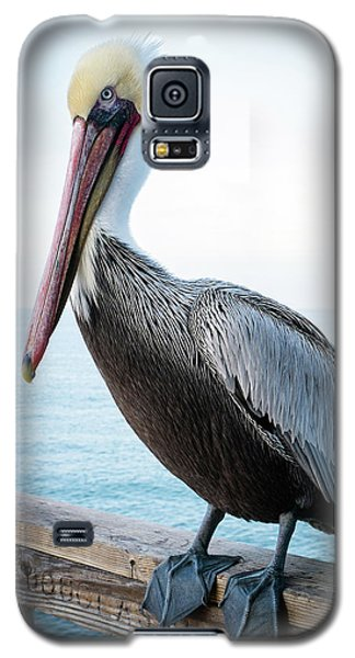 Galaxy S5 Case featuring the photograph Untitled by Catherine Lau