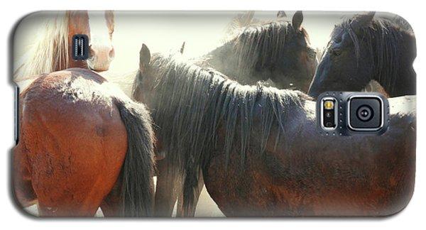 Wild Horses - Australian Brumbies 3 Galaxy S5 Case
