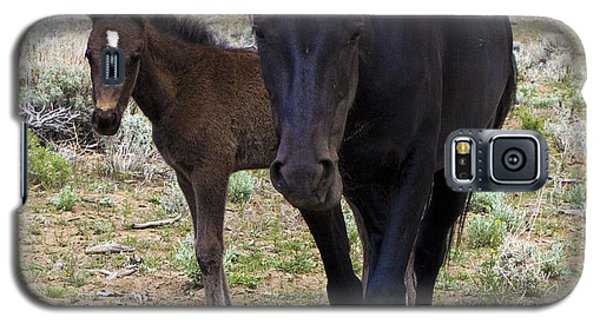 Wild Mustang Mare And Foal Galaxy S5 Case