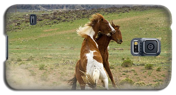 Wild Mustang Stallions Fighting Galaxy S5 Case