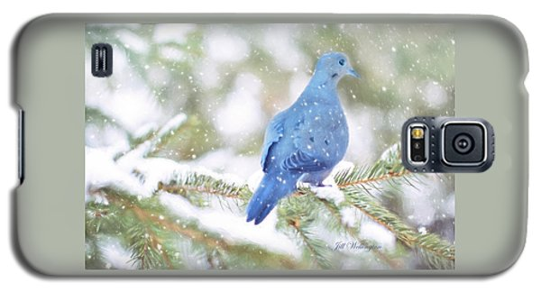 Winter Birds Galaxy S5 Case