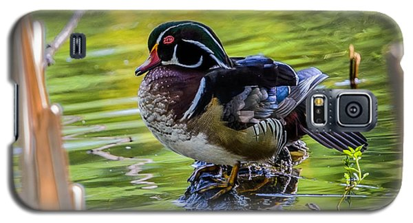 Wood Duck Galaxy S5 Case by Jerry Cahill