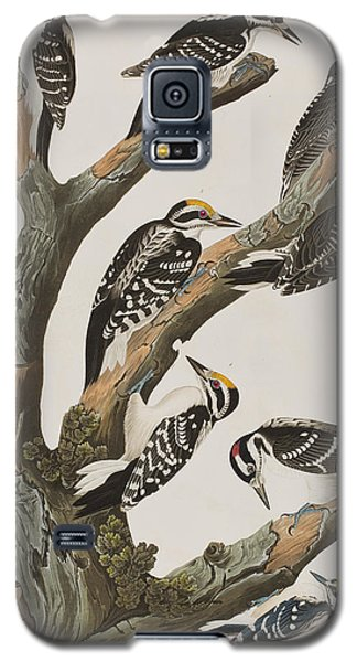 Woodpeckers Galaxy S5 Case
