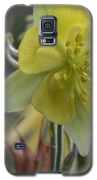 Yellow Flower 4 Galaxy S5 Case