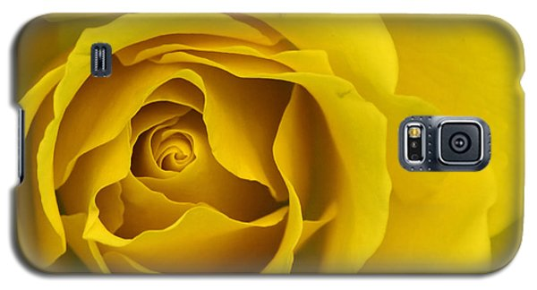 Yellow Rose Galaxy S5 Case by Adrian LaRoque