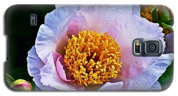2015 Spring At The Garden White Peony  Galaxy S5 Case