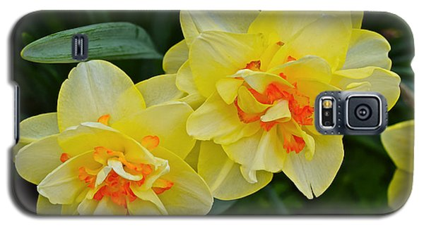 2015 Spring At The Gardens Tango Daffodil Galaxy S5 Case