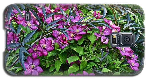 2015 Summer At The Garden Beautiful Clematis Galaxy S5 Case