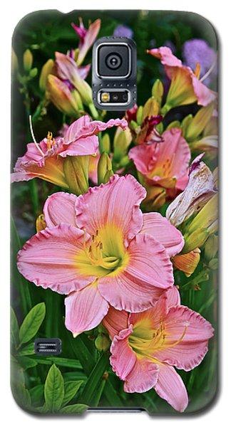 2015 Summer At The Garden Daylilies 1 Galaxy S5 Case