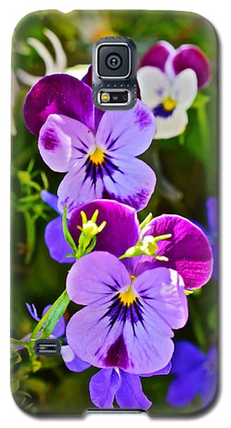 2015 Summer's Eve At The Garden Pansy Totem Galaxy S5 Case