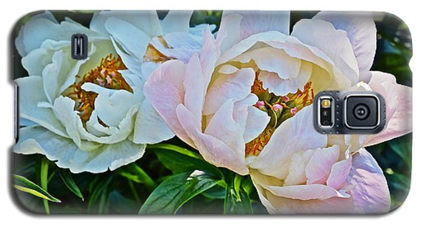 2015 Summer's Eve At The Garden White Peony Duo Galaxy S5 Case
