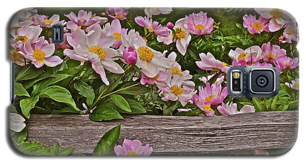2015 Summer's Eve Front Yard Peonies 1 Galaxy S5 Case