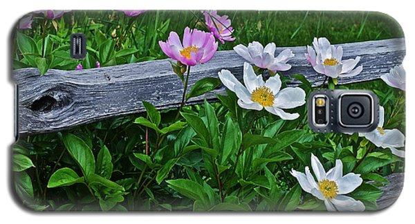 2015 Summer's Eve Neighborhood Garden Front Yard Peonies 2 Galaxy S5 Case