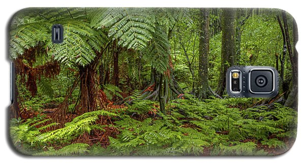 Galaxy S5 Case featuring the photograph Jungle by Les Cunliffe