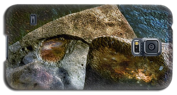 Stone Sharkhead Galaxy S5 Case