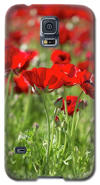 Fine Art  Galaxy S5 Case
