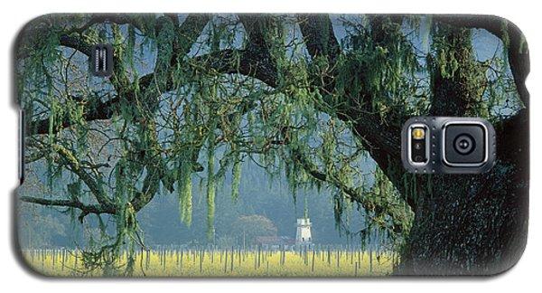 2b6319 Mustard In The Oaks Sonoma Ca Galaxy S5 Case