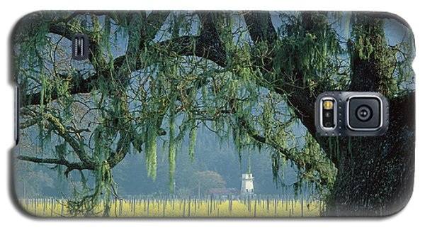 2b6319 Mustard In The Oaks Sonoma Ca Galaxy S5 Case