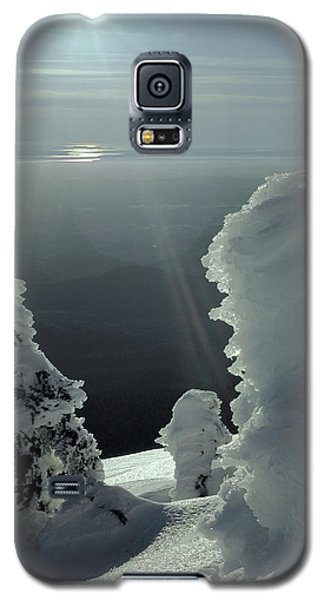 2m4415 A Ice Covered Trees Over Puget Sound Galaxy S5 Case