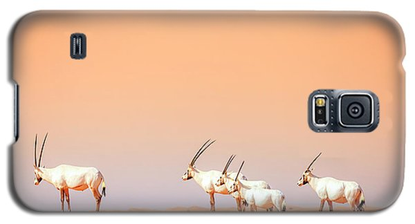 Galaxy S5 Case featuring the photograph Arabian Oryx by Alexey Stiop