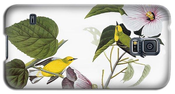 Audubon Galaxy S5 Case - Audubon Warbler by John James Audubon