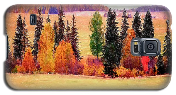 Autumn Landscape Galaxy S5 Case