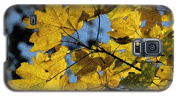 Galaxy S5 Case featuring the photograph Autumn Leaves by Jean Bernard Roussilhe