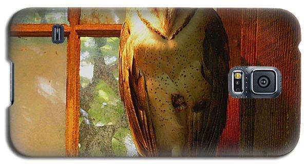 Barn Owl Galaxy S5 Case by Janice Spivey