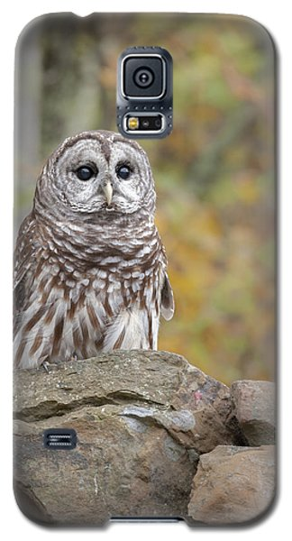 Galaxy S5 Case featuring the photograph Barred Owl by Tyson and Kathy Smith