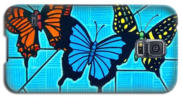 3  Butterflies On Blue Galaxy S5 Case